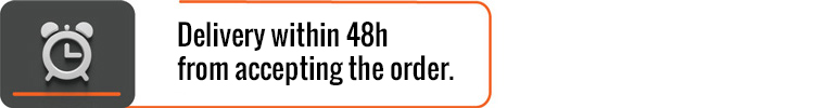 Delivery within 48h from accepting the order.